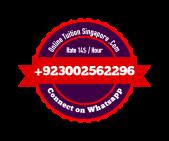 Pakistan Online tutoring, Online tutor, Online teacher, Online tuition (16)