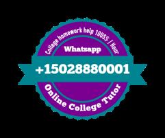 Pakistan Online tutoring, Online tutor, Online teacher, Online tuition (2)